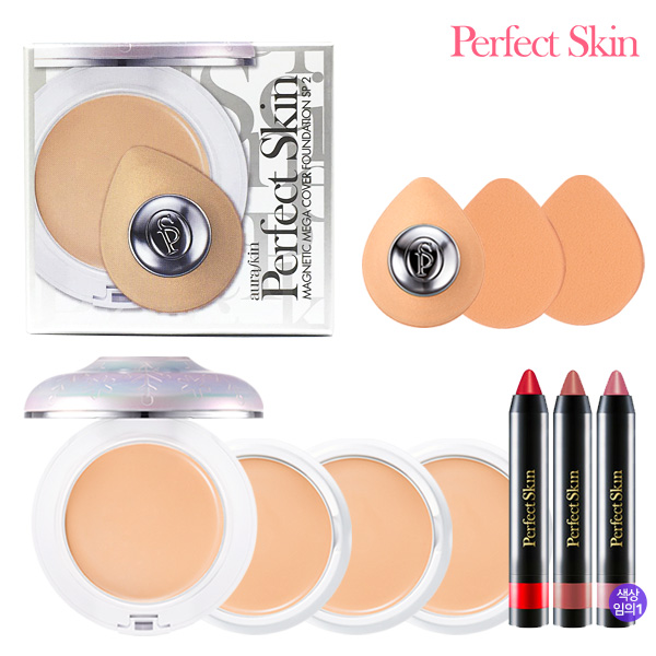 PERFECT SKIN MAGNATIC MEGAR COVER Foundation6 500% Package 21
